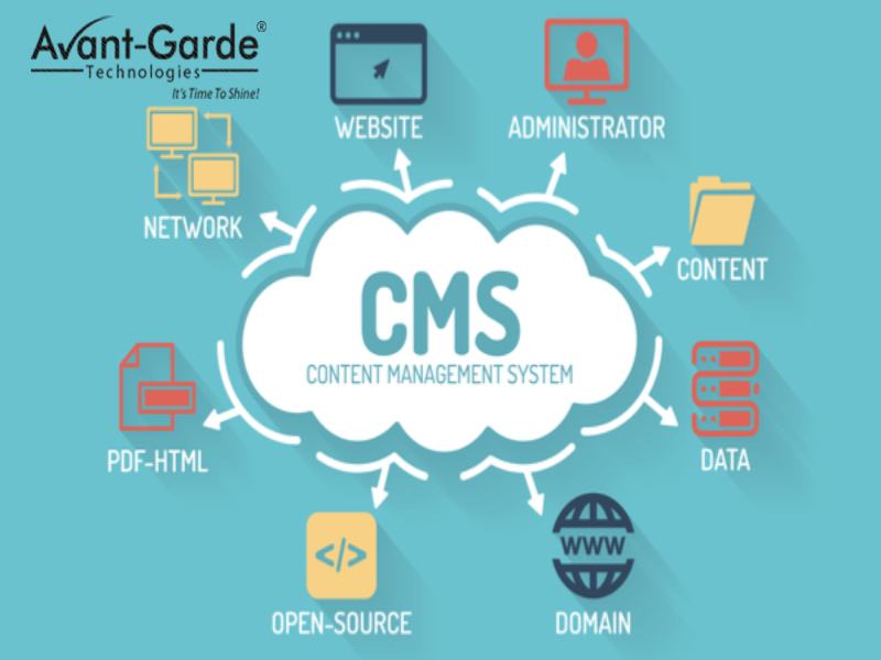 CMS management service in india